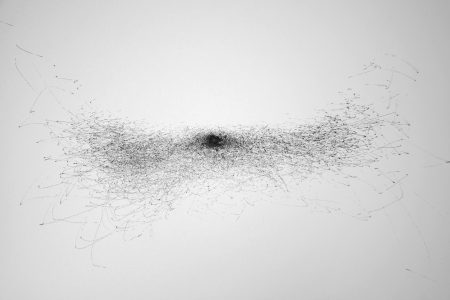 Murmuration, Artists' Talk